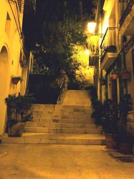 Climbing stairs Climbing Climbing Stairs Green Roof Green Road Green Stairs Stairs Green Street Bucolic Street Night Lights