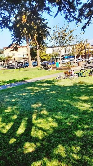 Arcata California Plaza... Hanging out with the brothers.... Hanging Out Taking Photos Magic... Loving Life! ! !