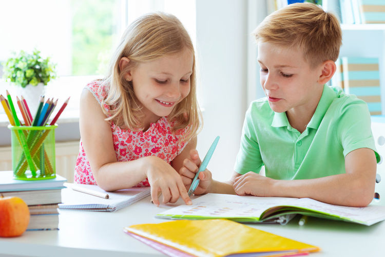 Boy with sister studying at home