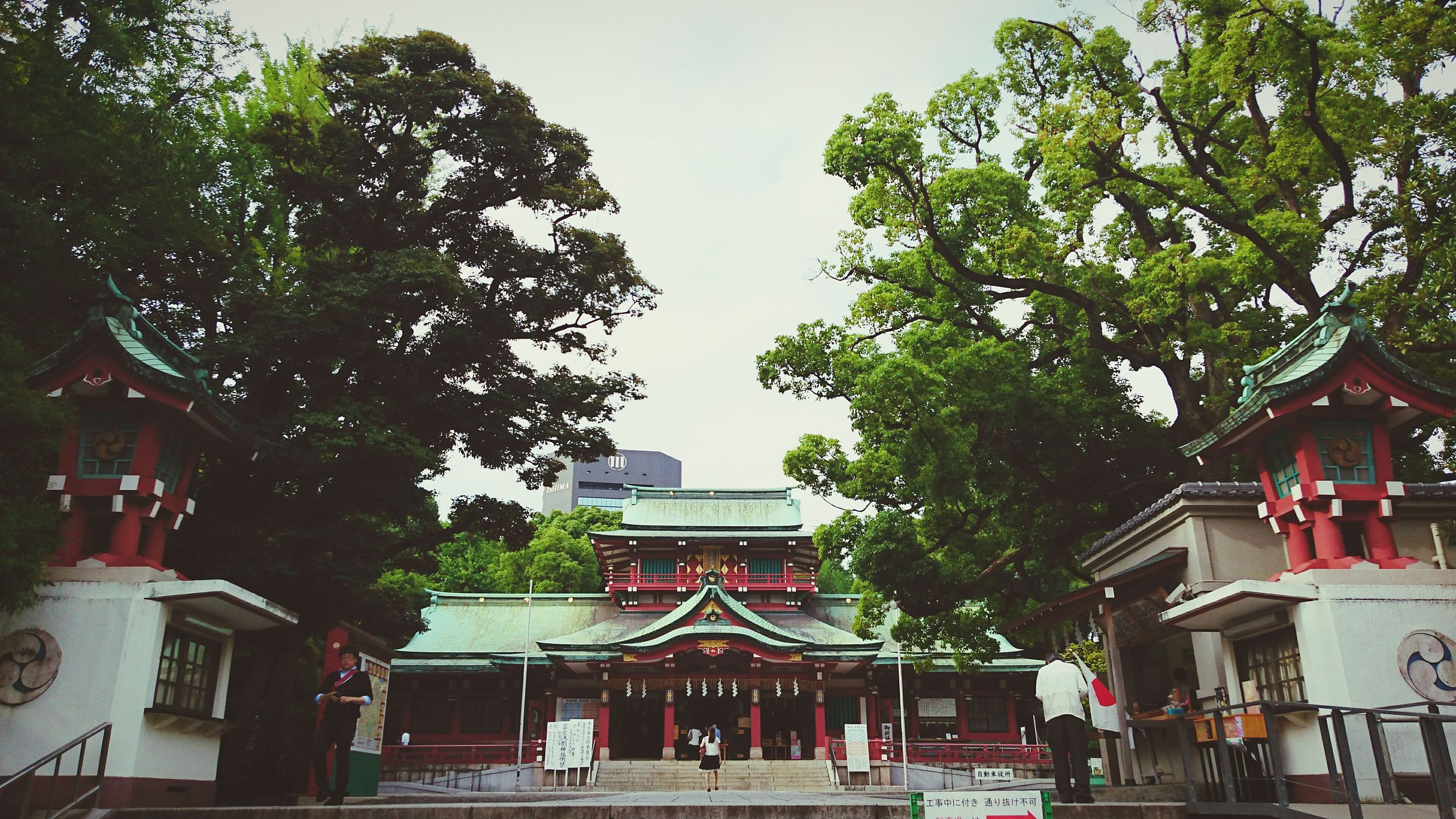 building exterior, architecture, built structure, tree, place of worship, religion, spirituality, low angle view, roof, temple - building, sky, outdoors, day, no people, facade, exterior, growth, nature