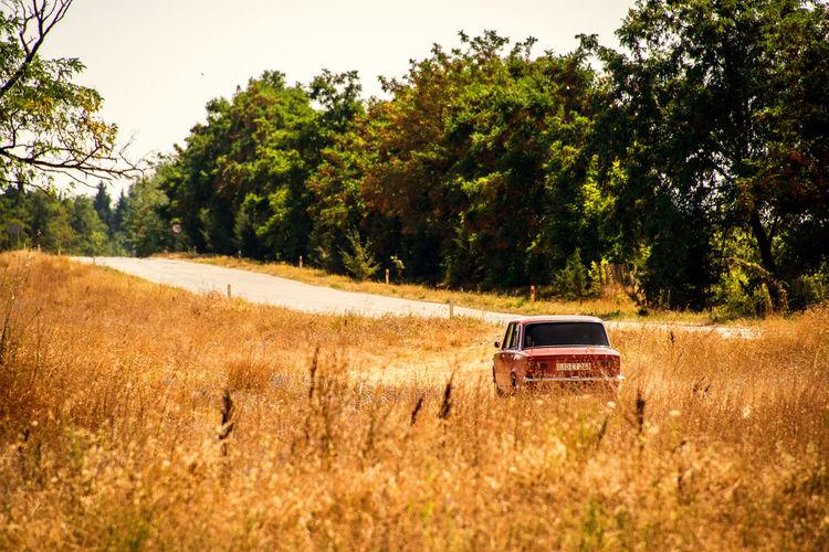Car on field against clear sky