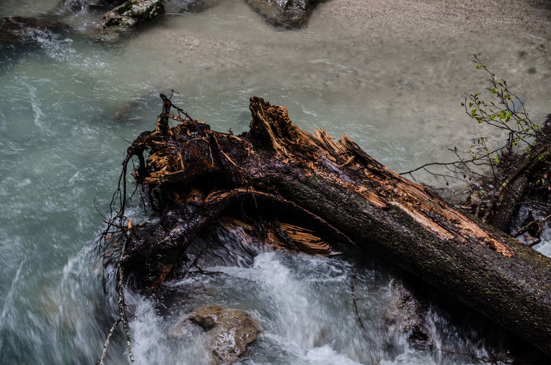 Partnachklamm River Tree Rain Stone Material Klamm Und Wasser Water Droplets Broken Tree Stump Water Sea UnderSea Sky