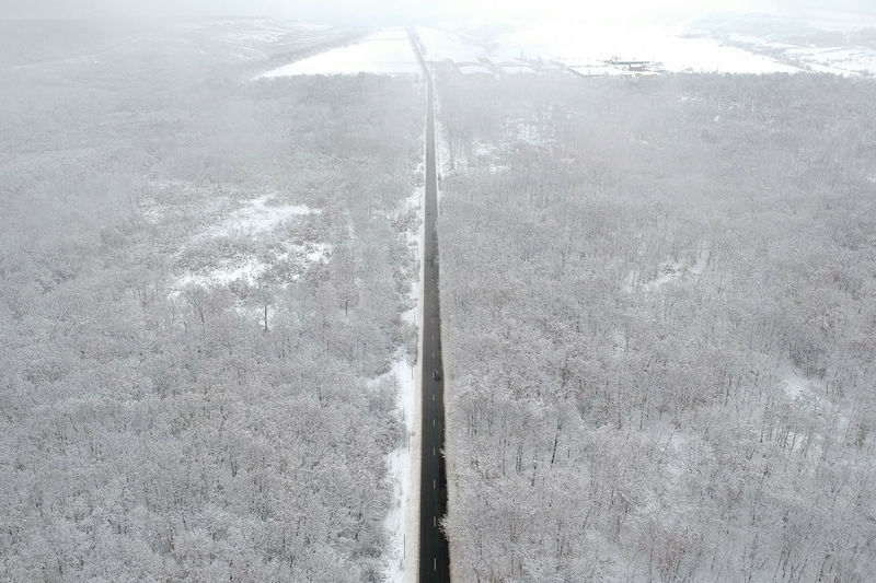 Winter view of a road in the middle of the forest covered with snow Snow Winter Nature Aerial View Driving Road Forest Snowing Covered Cars Asphalt Trees White, Field