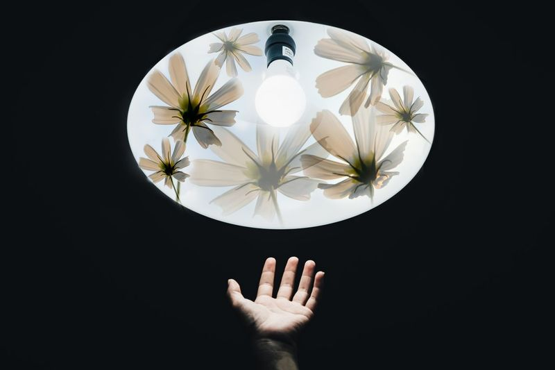 Cropped Hand Reaching Illuminated Pendant Light In Darkroom