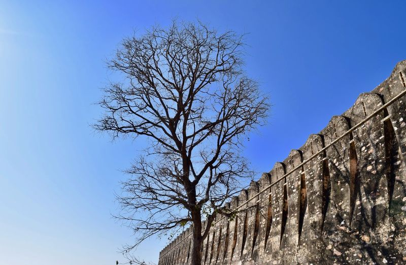 Low angle view of fort by tree against clear blue sky