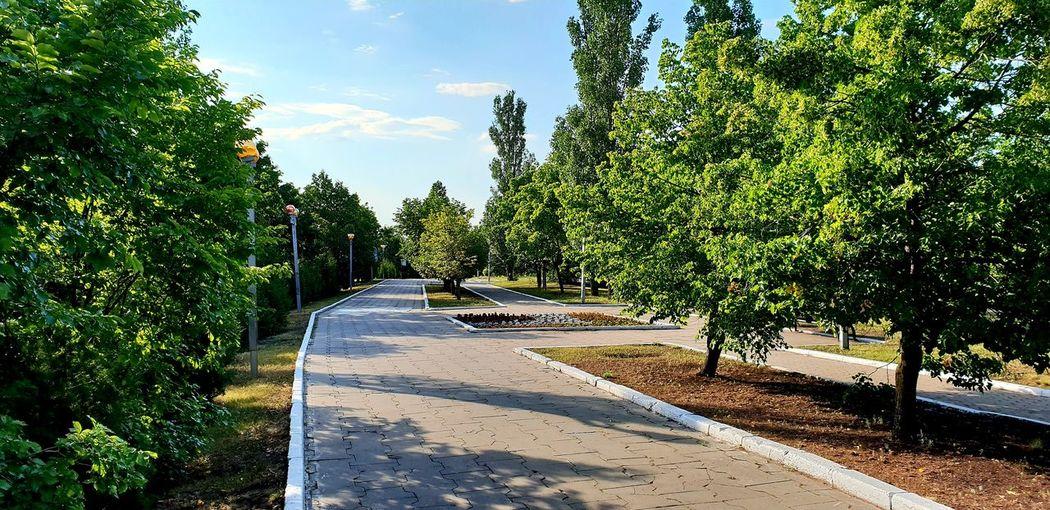 Withgalaxy снятонаgalaxy Park Tree Shadow Sunlight Sky Plant Garden Path Park - Man Made Space Park Bench Treelined Garden