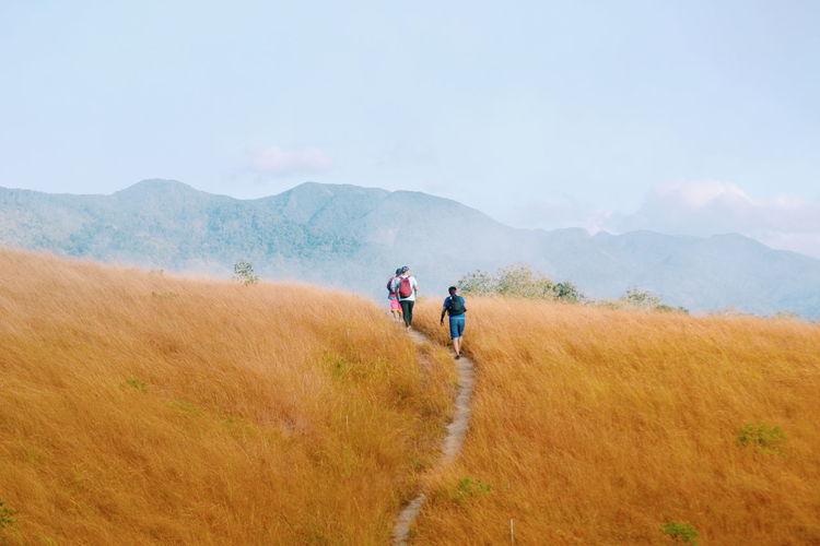 Rear view of friends walking on grassy field against sky