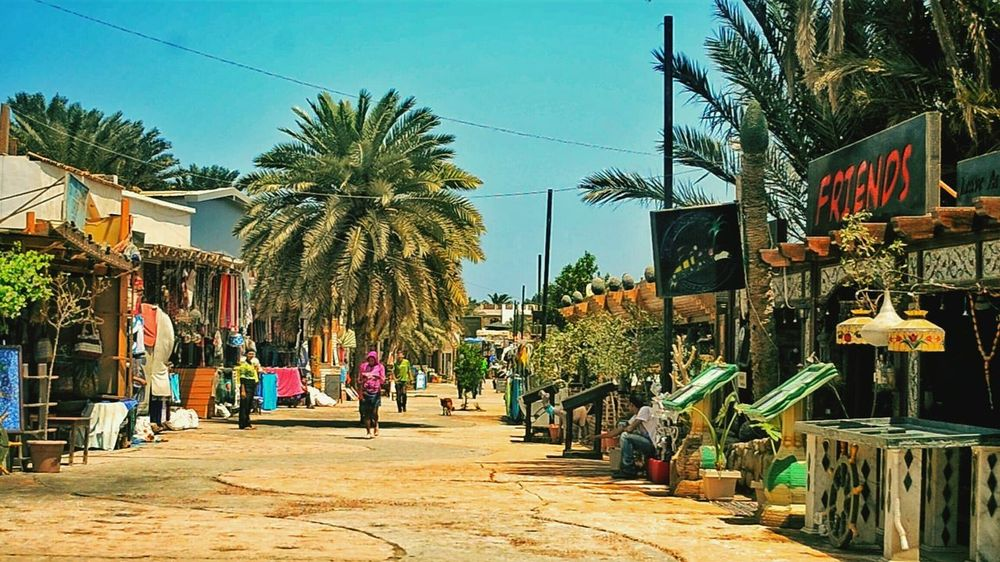 Palm Tree Tree City Travel Destinations Retail  Outdoors Market Day Sky People Built Structure This Is Egypt ❤ Tranquil Scene Egyptian Art Blue Egyptphotography Dahab Saini Dahab Red Sea Beauty In Nature Scenics Tranquility Dahab-island Dahabdiverslodge Dahab Beach Sinia Egypt