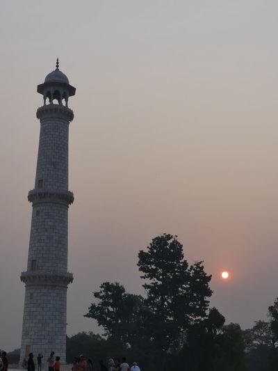 One of the Taj