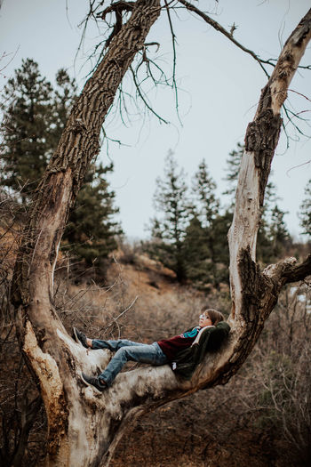Person on tree trunk amidst plants in forest