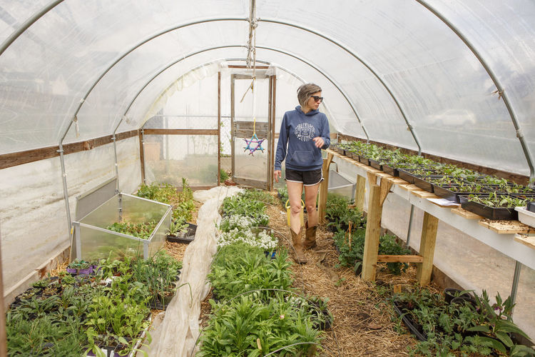 Young man standing in greenhouse