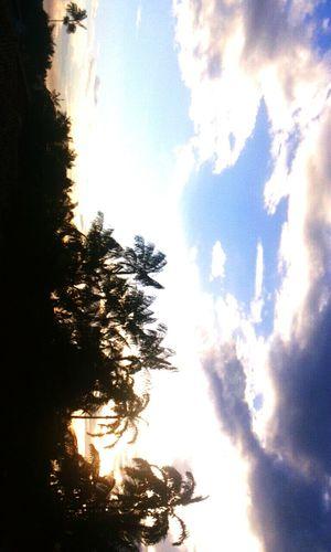 Cloud - Sky Sky Nature Day Beauty In Nature Blue Summer Sunset Sun Paradise First Eyeem Photo