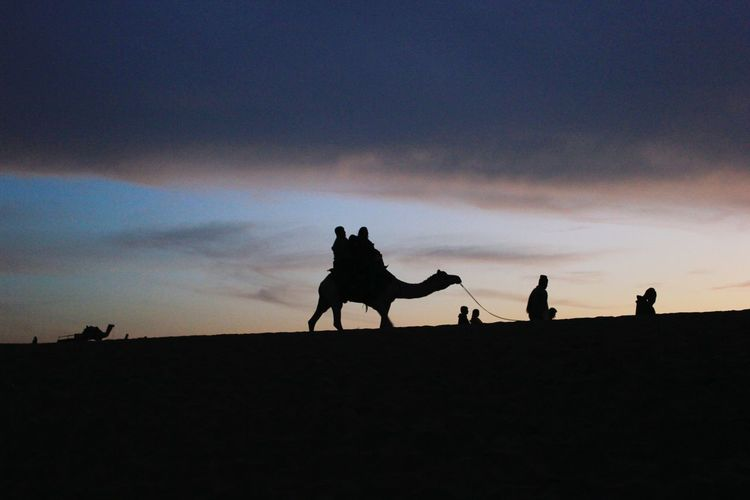 The Tourist Showcase: February Deserts Around The World Light And Shadow Silhouette Jaisalmer Rajasthan India Travel Camel Ride Thar Desert Sand Dunes Happiness Ride AMPt - Memory Telling Stories Differently Showing Imperfection