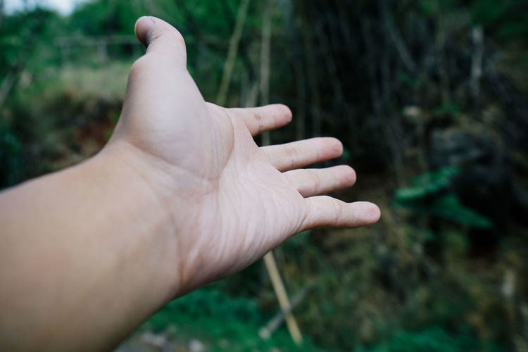 Close-up of man hand gesturing against plants