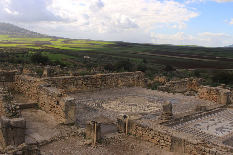 Volubilis (Berber: Walili, Arabic: وليلي‎) is a partly excavated Roman city in Morocco situated near the city of Meknes. Meknès Walili Ancient Civilization Archaeology Architecture Built Structure Cloud - Sky History Marocco Nature No People Old Ruin Romain  Sky The Past Tree