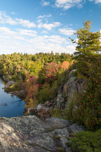 2016 Camping Canada Colors Discover Your City Expplore Fall Jack Nobre Lake Landscape Leafs McrCae Lake Natural Nature No People October Ontario Outdoors Photography Red Reflection Relaxing Tree Weather World