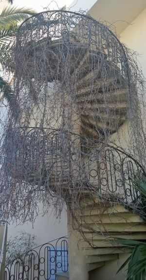 Winding Stairs Vines Overgrown Tunisia Hotels And Resorts Staircase To Heaven The Secret Spaces