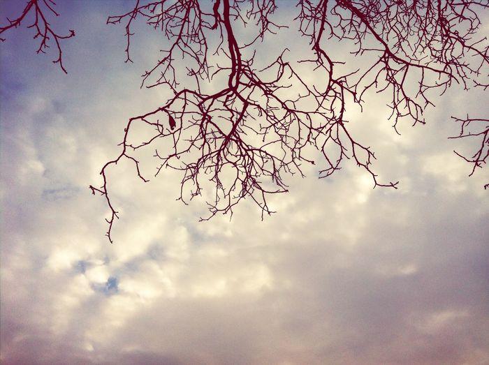 Herbst Der Himmel über