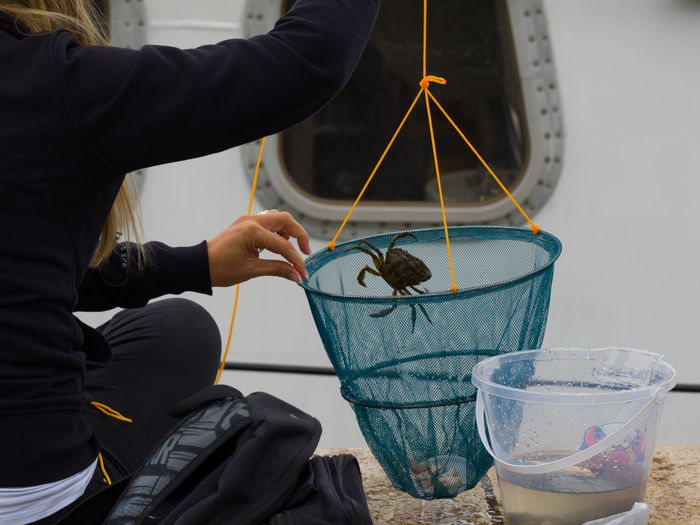 Crabbing Crab Quayside Close-up Crabbing Day Fishing Freshness Holding Human Hand Indoors  Learning Net Occupation One Person Real People Working