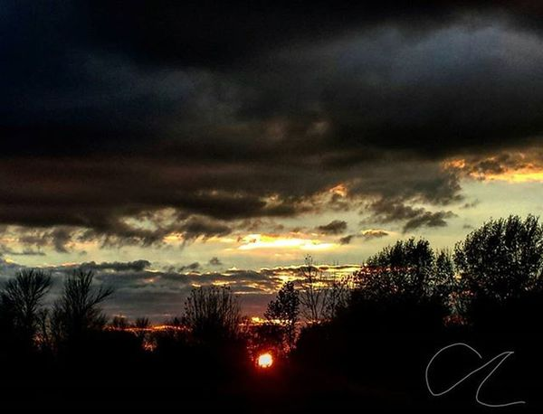 Sun dying down 🌅 Sun Sunset Die Down Dark Shadow Photography Picture Picoftheday Art Artistic Artist Beauty Lovely Pretty Gorgeous Beautiful Nature Natural Clouds Sky Cloudy Trees Fall Day night light instagood