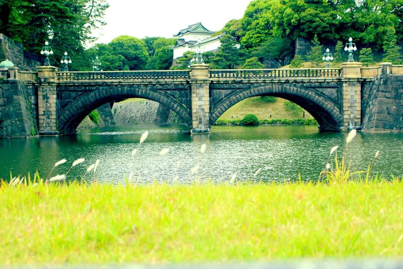 Imperial Palace Garden Imperial Palace, Japan Imperial Palace Tokyo Imperial Palace EOS Kiss X7 SLR Canon SLR Camera Tokyo Tokyo,Japan Japan Bridge Bridge - Man Made Structure Architecture Plant Connection Built Structure Water