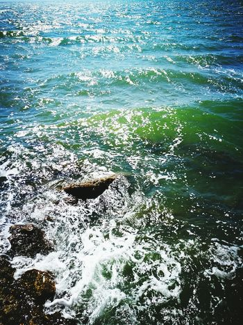 Water No People Nature Outdoors Day Sea Sea Life Tranquility