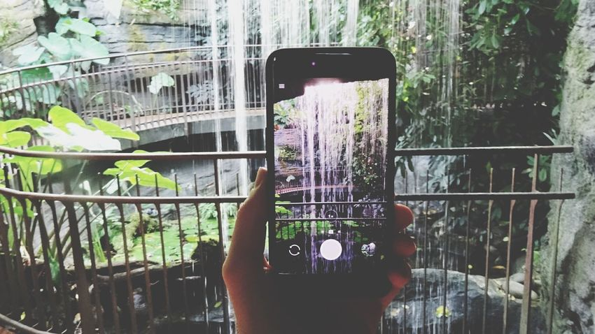 Tropical atmosphere. Wireless Technology Human Body Part Portable Information Device Mobile Phone Waterfall Tropical Greenhouse Holding Photography Themes Muse Trento