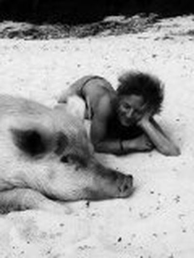 Beach Bikini Black And White Creative Photography Pig Face SexyGirl.♥ Smile :) Unique Moments