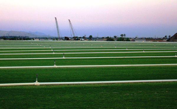 Sod farm with irrigation pipes Agriculture Beauty In Nature Cranes Green Color Growth Irrigation Landscape Lines Nature No People Outdoors Rural Scene Sky Tranquility