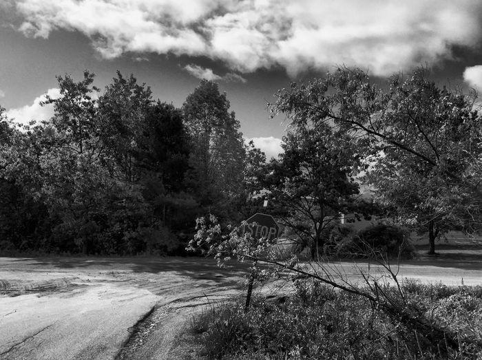 Blackandwhite Cloudy Day Scenery Maine