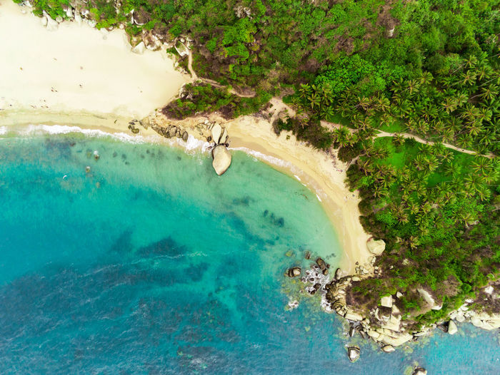 Aerial view of the coast of the Caribbean in Cologne and part of the Tayrona National Park Water Scenics - Nature Beauty In Nature Nature Land Sea Day Outdoors Top Downtown District Colombia Tayrona Natural Park Caribbean Tropical Climate Tropical Coast Landscape Areal View Beach Beachphotography Drone  Blue Seascape Wave Waves Ocean Turquoise Colored Palm Tree Forest Beauty In Nature Beautiful Paradise Scenic South America Jungle Outdoor Tourism Relax Unique Variation Summer Joy