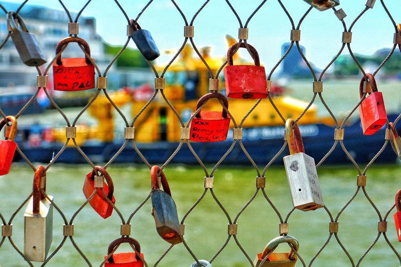 Love Locks Hanging On Chainlink Fence