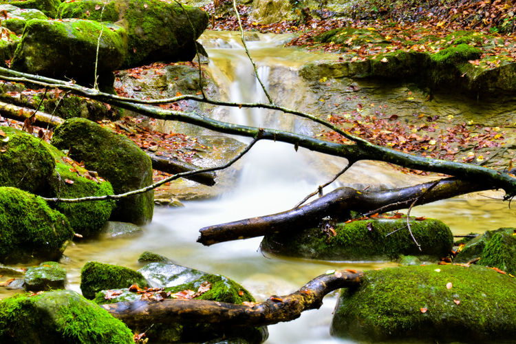 Close-up of rocks by lake