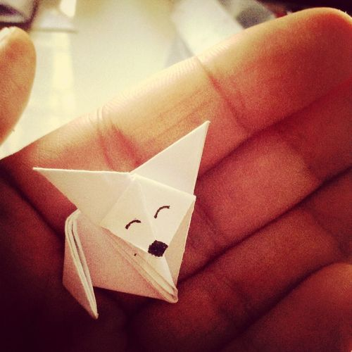 My First origami Origami Fox Frist Time