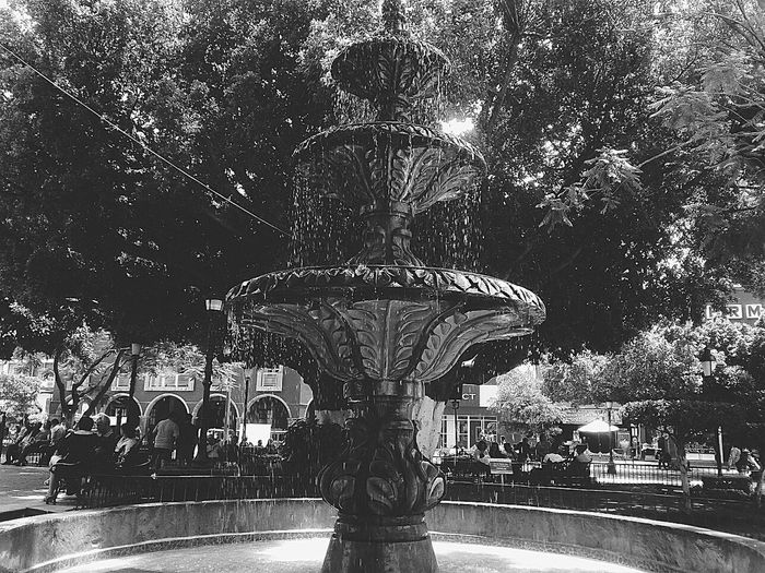 Fuente. City Water Blackandwhite Black And White Blanco & Negro  Font Fuente