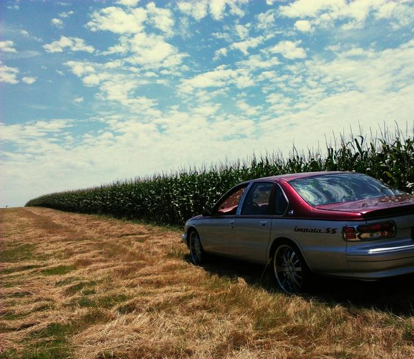 popcorn weels EyeEmNewHere Classic Car Classic Real People KeepitG Corn Field Cars And Nature Offroad Impala Impala Ss Car Rural Scene Sky Cloud - Sky Landscape Corn - Crop Sweetcorn Crop  Corn Off-road Vehicle Vintage Car Side-view Mirror Land Vehicle