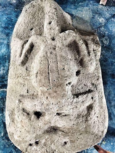 Lagarto 🐊 Animals Animal Themes Arqueology Maya Mayan Ruins Chiapasiónate Legado