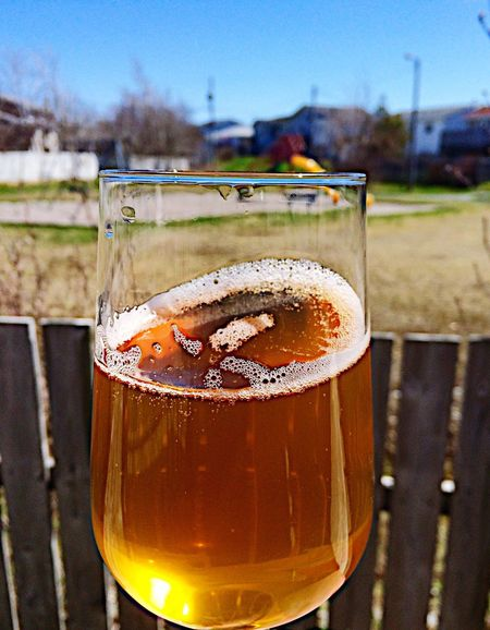 Summer Beer Beer Beers Drinking Beer Summer Food Liquid Sun Beer Time Glass Glasses Relaxing Enjoying Life Hanging Out Friends