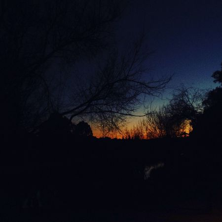 We are each our own devil, and we make this world our hell. (Grimm) Cielo Photography Sky Paseo Frases Walking Thinking Sentence Trees Movil Sevilla Relaxing Hell Blue Darkness And Light Dark World Winter Nature Photography Wintertime Winter Wonderland Winter Trees Sundown Atardecer Noche