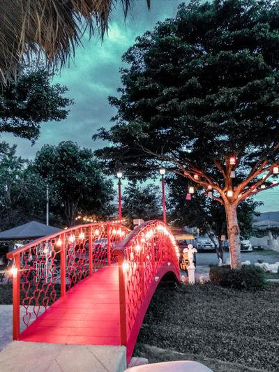 Illuminated park against sky at dusk