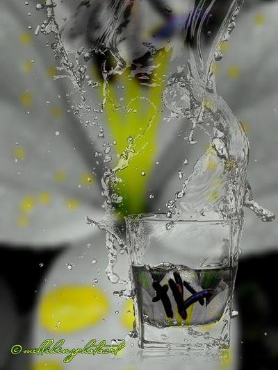 FotoMontage flowermagic in Waterglass Waterdrops Flowers Coloursplash Experimental Photography Waterdrops Macro_flower Flower Photography Macrophotography Macroshot Lilies Flowermagic🌱 Eyeemphotography EyeEm Gallery Floweroftheday Waterglass Fotomontage Blütenzauber Lillie Power