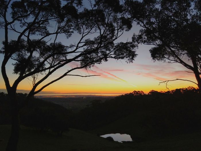 Ocean View View Over The City Water Dam Tree Dusk Sunset Silhouette Sky Landscape Branch Evening EyeEmNewHere HUAWEI Photo Award: After Dark