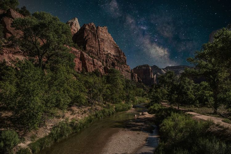 Love the stars Star - Space Nature Night Sky Beauty In Nature Milky Way Landscape Scenics Outdoors Taking Photos Wild Nature Exceptional Photographs Travel Destinations Awesome Amazing View Neverstopexploring  Zion National Park Utah Milkywaychasers Fresh on Market 2016 The Great Outdoors - 2017 EyeEm Awards
