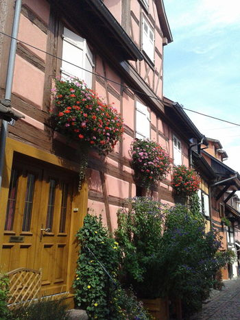 Alsace Architecture Building Exterior Eiguisheim Exterior Historic Maison à Colombages Urban