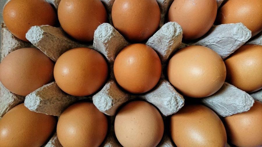 EyeEm Best Shots Eyeem Philippines Eggs... EyeEm Selects EyeEm Gallery Brown Eggs Egg Tray Egg Carton Full Frame Egg In A Row Close-up Animal Egg Arrangement Repetition Eggshell Abundance Order For Sale