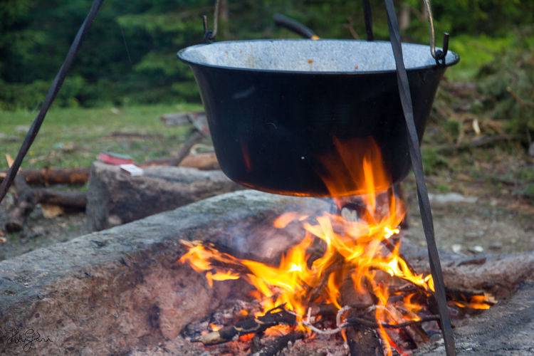 Peak Negoiu, Transylvania Burning Close-up Day Flame Focus On Foreground Heat - Temperature No People Outdoors Wood - Material