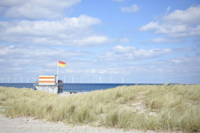 Beach Blue Denmark Life Is A Beach Nature Outdoors Remote Tranquility Wind