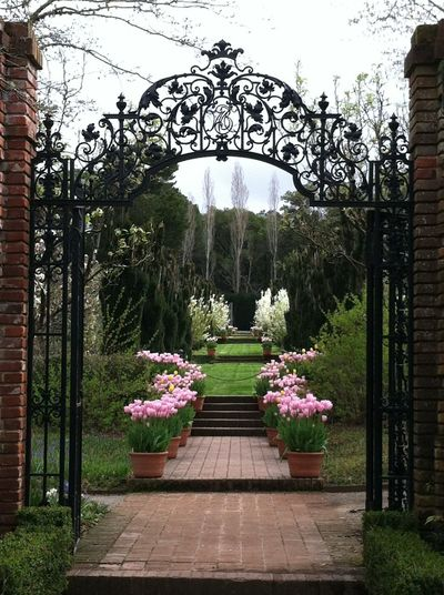 Beauty In Nature Built Structure Early Spring Flowers Filoli Garden Flower Grass Historic Gardens Iron Work Nature Outdoors