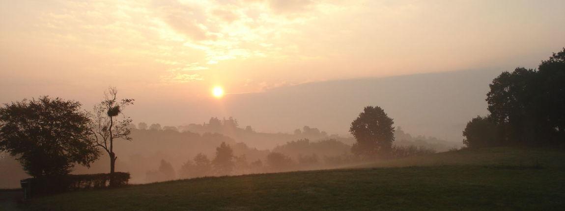 Campagne Ciel Country Lever De Soleil Mist Nature Ombres Et Lumières Shadow & Light Sky Sunrise Tranquility