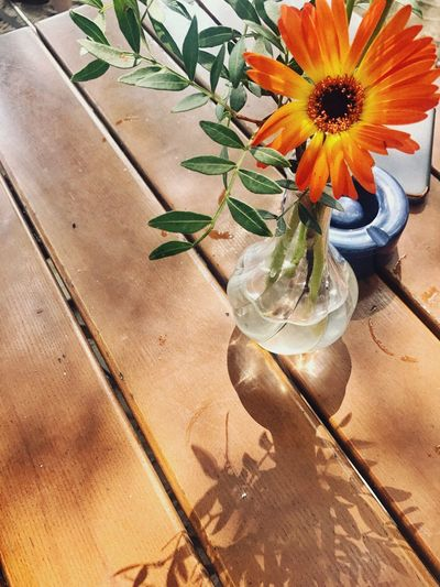 ...while food comes, I play with flowers. Flower In A Vase Vase Spring Color Orange Restaurant Table Waiting Restaurant Freshness Nature Plant Sunlight Flower High Angle View Flowering Plant Fragility Table Close-up Still Life Vulnerability  Flower Head